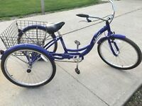 Schwinn Meridian Tricycle - for adults