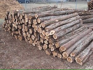 Cedar fence Posts Pickets and Rails for Sale