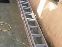 Two Tier Ladders
