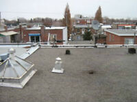 ROOFER- EXPERT - FAST AND FREE ESTIMATE - SHINGLES - MEMBRANES -