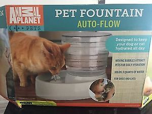 New Pet Fountain-Perfect for the hot summer