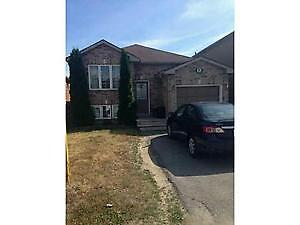 $1550 utilities included!!! 3-bedroom lower level of the house