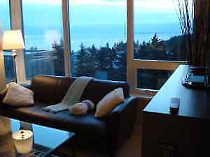 Panoramic View 840sqft 1 BD + Den Modern Ocean View Luxury Condo