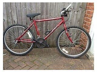 2 Raleigh bikes (1 men's and 1 ladies)