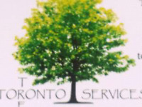Trees Trees Trees that what we do best 4165781887