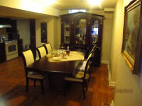 2 Bedroom Luxury Basement Apartment For Rent