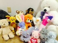 Stuffed Animals - Large and small      Watch     |     Share