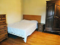 A room for rent in a single house near Algonquin College