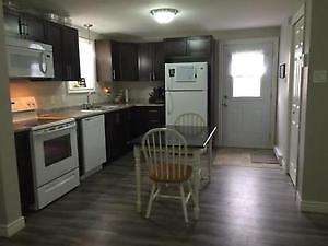 New spacious above ground basement Apartment in Paradise