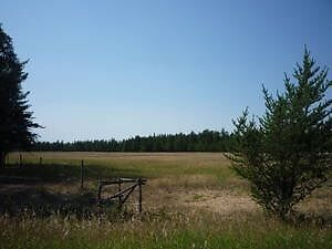 Acreage living 10 minutes from Nipawin!