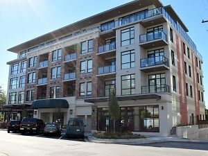 Gorgeous Brand New Furnished Executive Condo For Rent #715