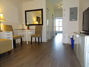 New condo 1BR fully furnished near downtown/ Gastown