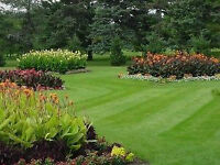 Landscaping/Yardwork 10 yrs experience Watch|Share |Print|Report