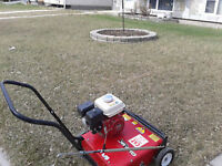 SPRING CLEAN UP (Includes Power Raking!)