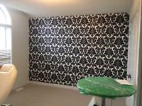 Wallpaper installation wallpaper removal painters