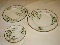 Royal Albert China - White Dogwood