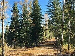 Beautiful Bare Acreage -On Highway 20, Rural Lacombe County