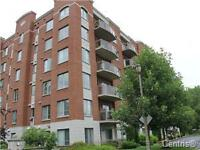 Spacious 2 Bedrooms 2 Bath modern condo.