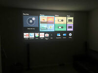Projection TV/ theatre System