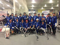 Ball Hockey, Roller Hockey and more! Full size NHL! Book it.