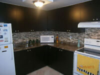 1 Bedroom Furnished apt available  for immediate possession