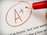 I will write your essay and course papers and assignments!