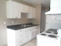 Downtown Apartments!! Newly Renovated!! Security Only $399!!