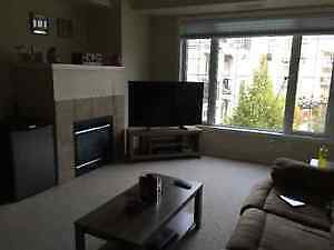 One bedroom available in 2 bed/2 bath condo