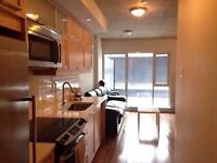 Short term lease, best price in Griffintown !