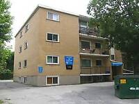 weekly cleaner- student rental property