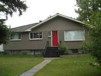 Bright sunny 2 bedroom Basement Suite available August 1