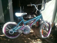 """16"""" tires, kickstand, bell and chain guard. Other stuff as well"""
