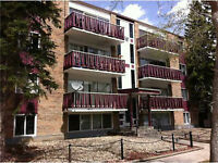 2 bedroom apartment with furniture for rent in Sunalta