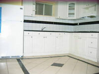 Bright one bedroom basement apartment - South of Richmond Hill