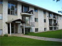 Spacious, clean, and bright 2 bedroom Top Floor apartment Great