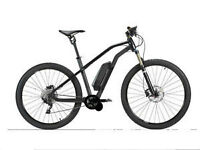 all new design for 2015 48v Electric Bike mid drive 50km/h