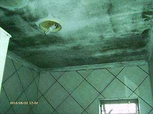 Bathroom Mould (Mildew) Removal & Painters - Table View - Milnerton - Edgemead