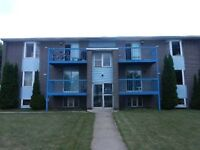 Large bright 2 bedroom apt in secure building.  Pets welcome!