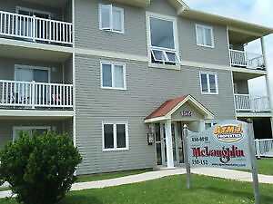 DEAL DEAL DEAL!!! apartment for rent
