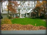 Leaf Cleanup & Removal (25% off if you book now !!!)