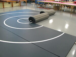 WRESTLING OR MARTIAL ARTS MATS