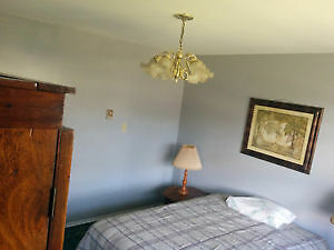 A very nice, clean, quiet, large room for rent Oakville / Halton Region Toronto (GTA) image 1