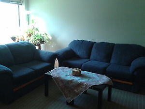 Sofa and Love seat in great condition just for 300$