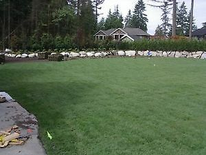 SOD installation only 79 cents installed - Limited TIME