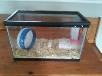 Hamster Home with water, wheel and lid