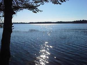 Lakefront Campsite (Cap-Pele)