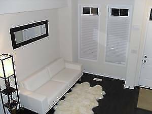 Furnished, 1 bdrm avail. June 1, 2019 Lakeshore-Windermere