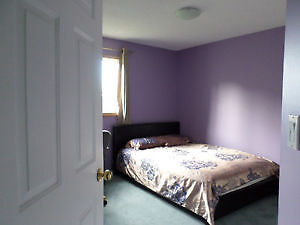 Private Room for rent Strathcona County Edmonton Area image 1