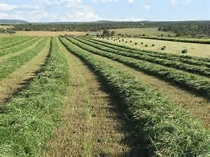 Farm Land Wanted