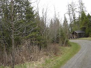 Terre à bois 104 acres Estrie zoné vert